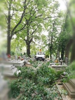 Podnośnik Koszowy czyszczenie i naprawa rynien Paczków  Prudnik  Grodków  Niemodlin